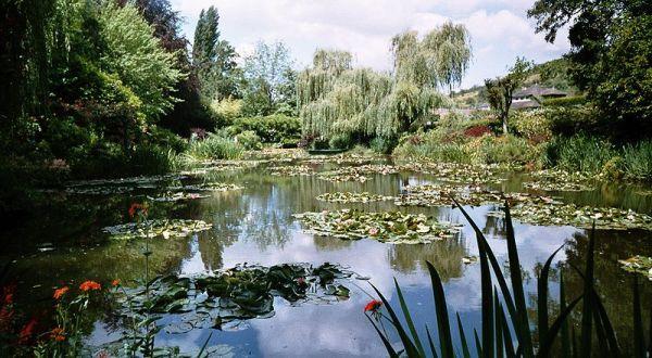 800px-Jardin_de_Claude_Monet-_Giverny-Bassin_aux_nymphéas