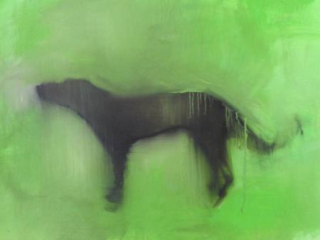 alberto-zamboni-cane-sciolto